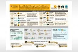 Cambridge Judge Digital Delivery Infographic