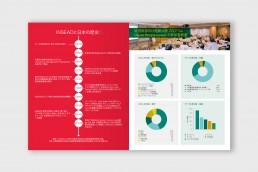INSEAD Japanese Brochure