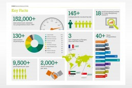 INSEAD Key Facts Infographic
